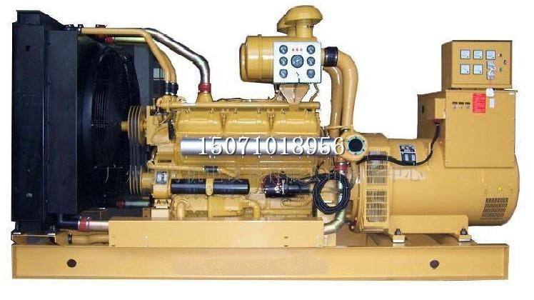 上柴动力发电机组4