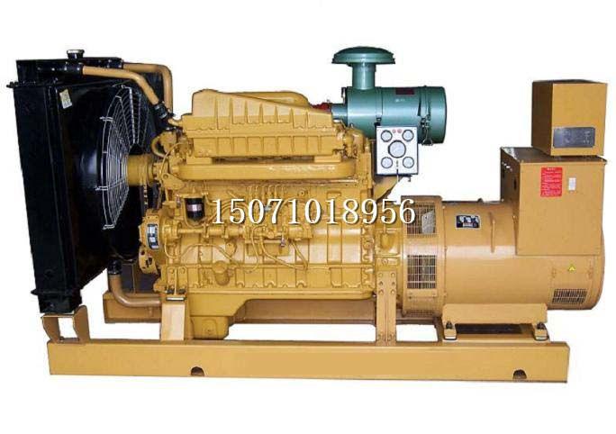 上柴动力发电机组1